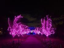 by Kew Gardens