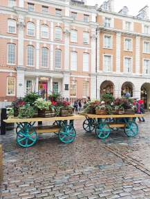 Flower Carriages