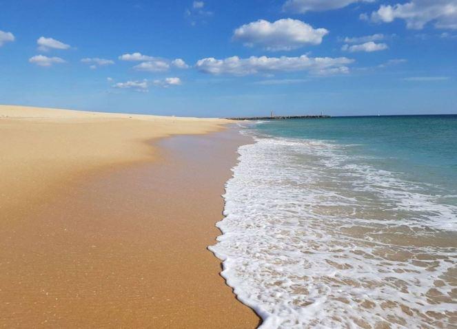 Ilha-deserta-beach-2